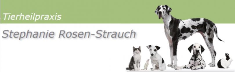 Rosen-Strauch, Stephanie
